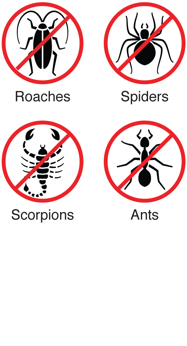 General Pest Protection includes ants, spiders, scorpions, and roaches.