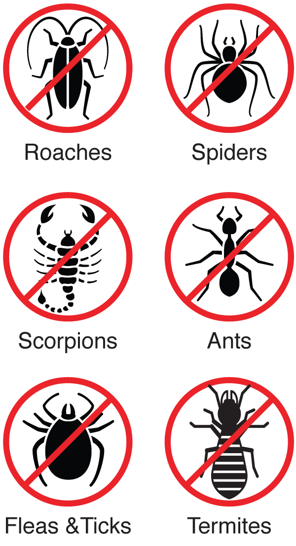 plus-termite-protection-icons